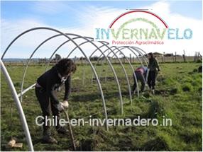 La instalación de un invernadero es fácil y sencilla y para realizarla no se necesita más que dos o tres personas.